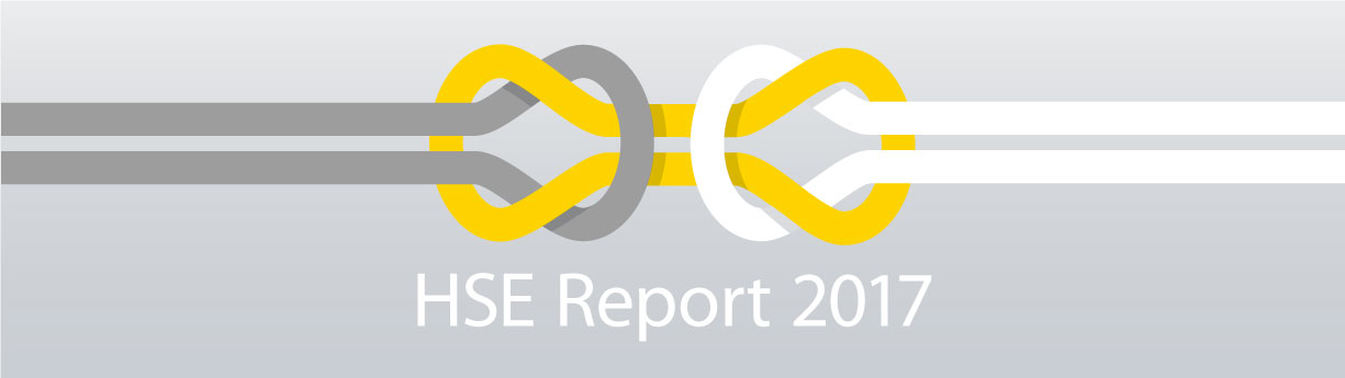 HSE-Report-2017_1225x345